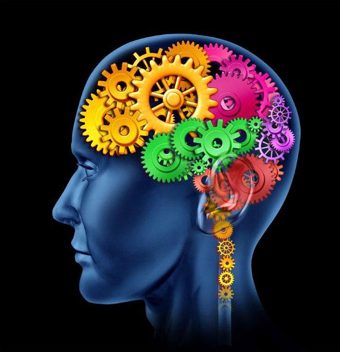 לשמור על המוח עובד (צ'-shutterstock)