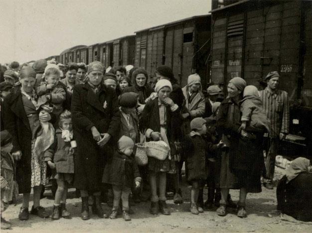 חושפים אותם לזוועות שקרו ולכל מי שנספה בשואה (צ'- יד ושם)