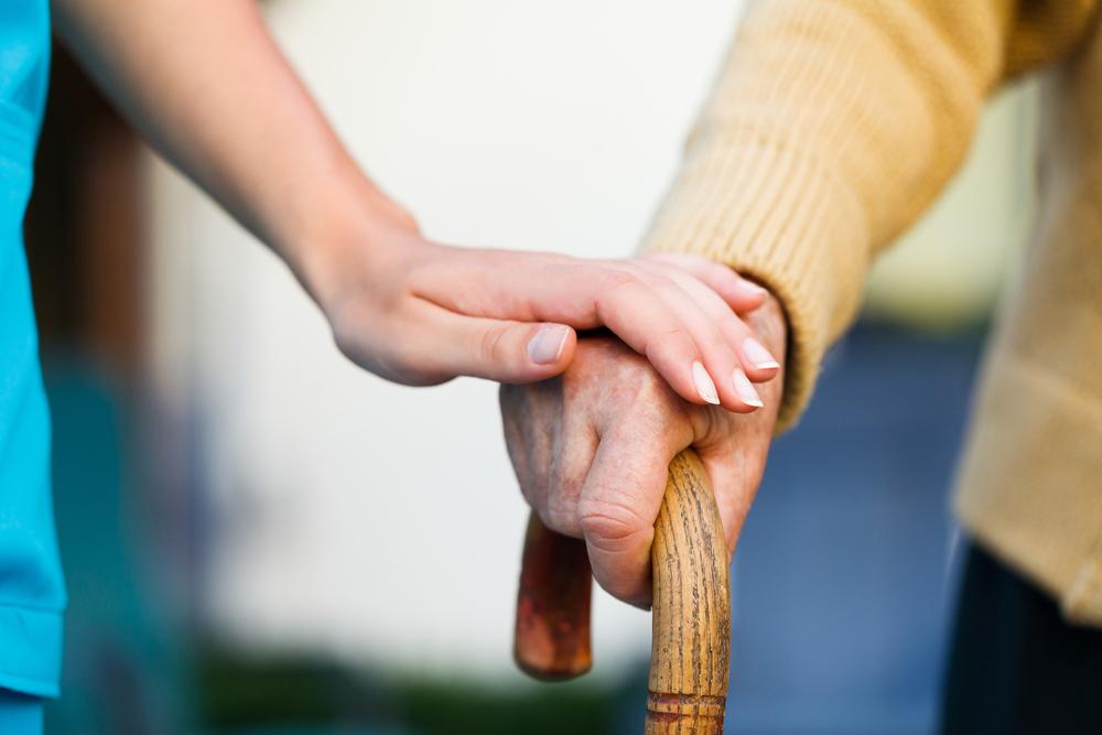 לעזור לעולים וותיקים וחדשים להשתלב בחברה (צ'- shutterstock)