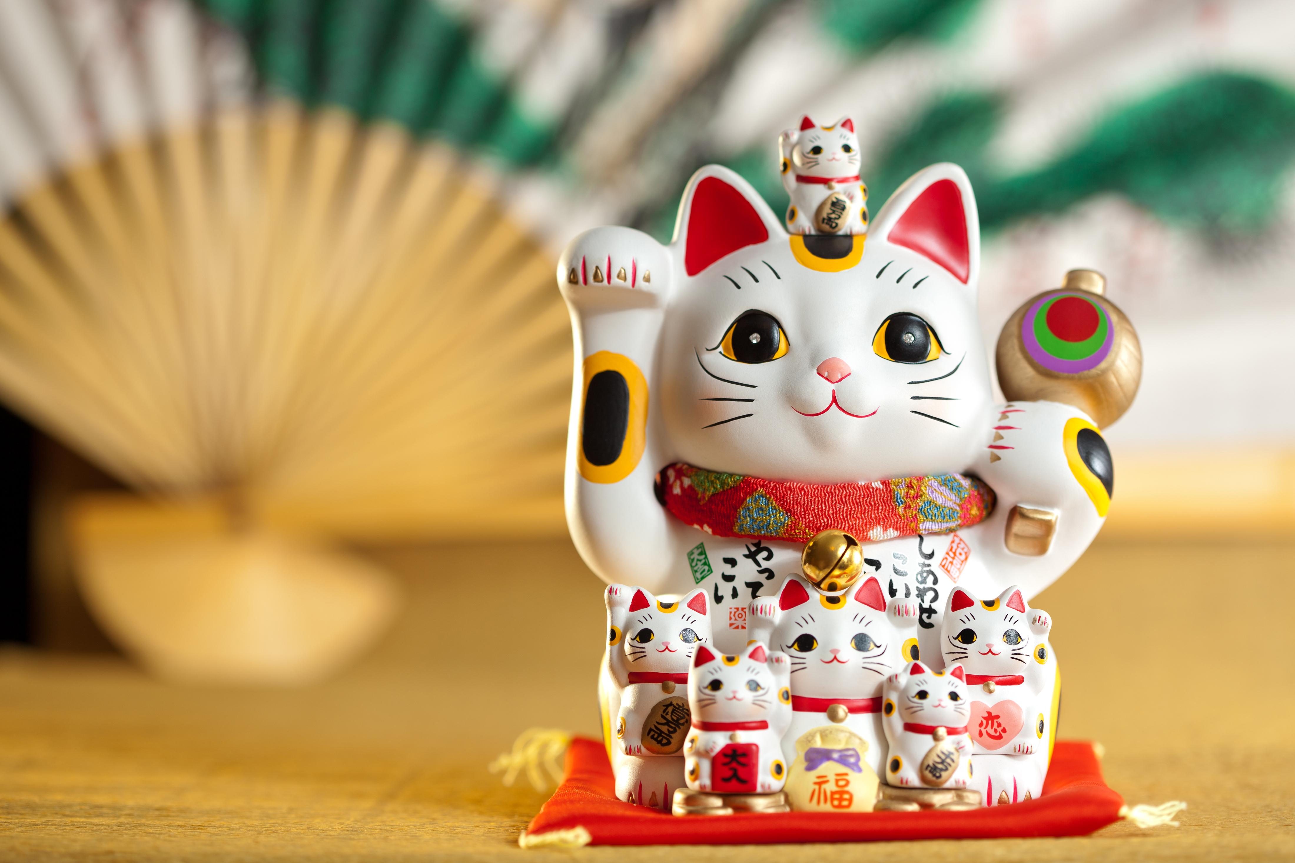 גם חתול המזל היפני לא יעזור לכם (צ'-shutterstock)