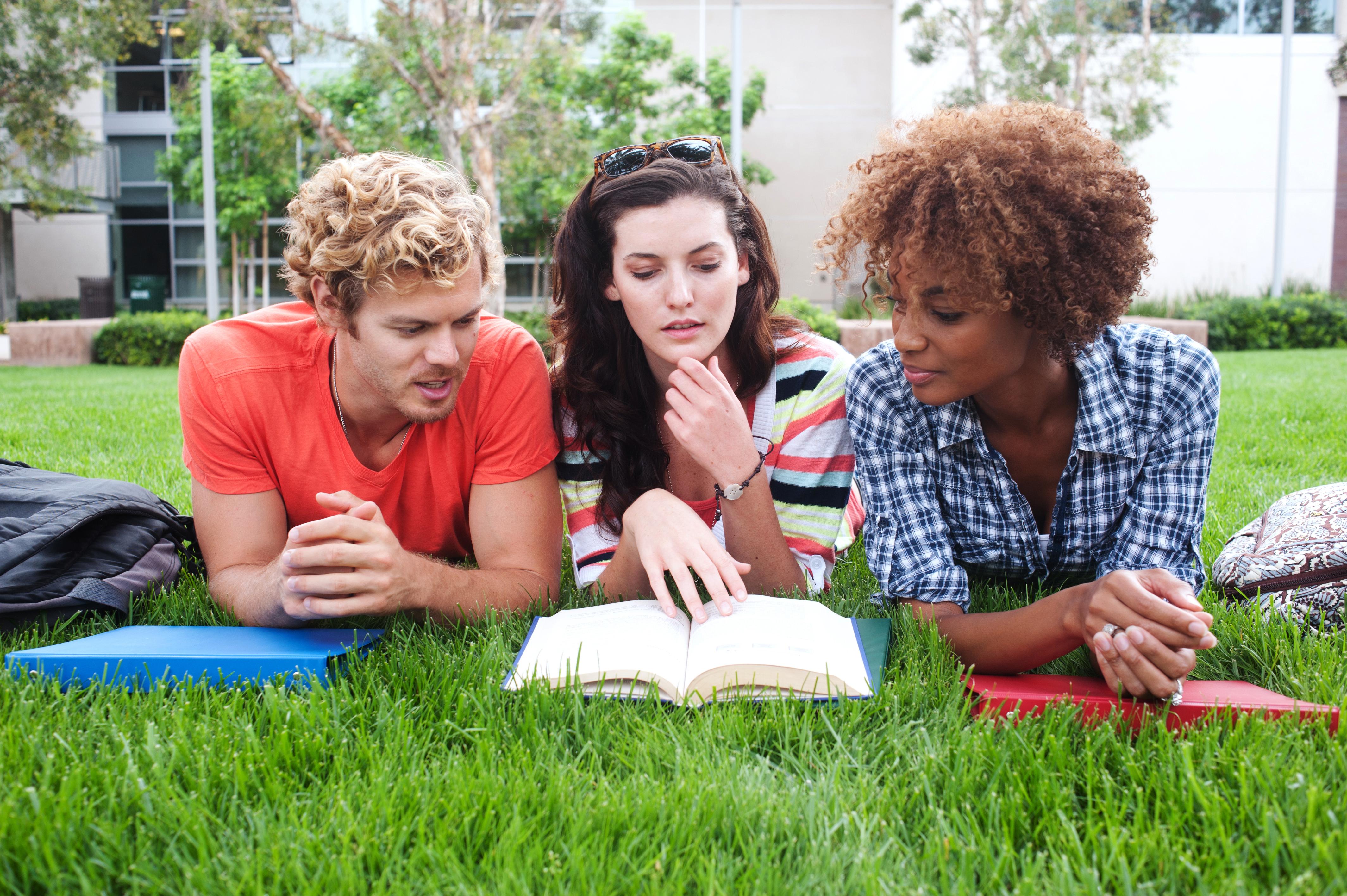 """הדשא באוניברסיטאות בחו""""ל יותר ירוק (צ'- shutterstock)"""