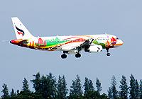 מטוס נוסעים. מקור: ShutterStock