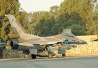 שרביט הלחימה עבר לחיל האוויר (צילום: ניר אריאלי)