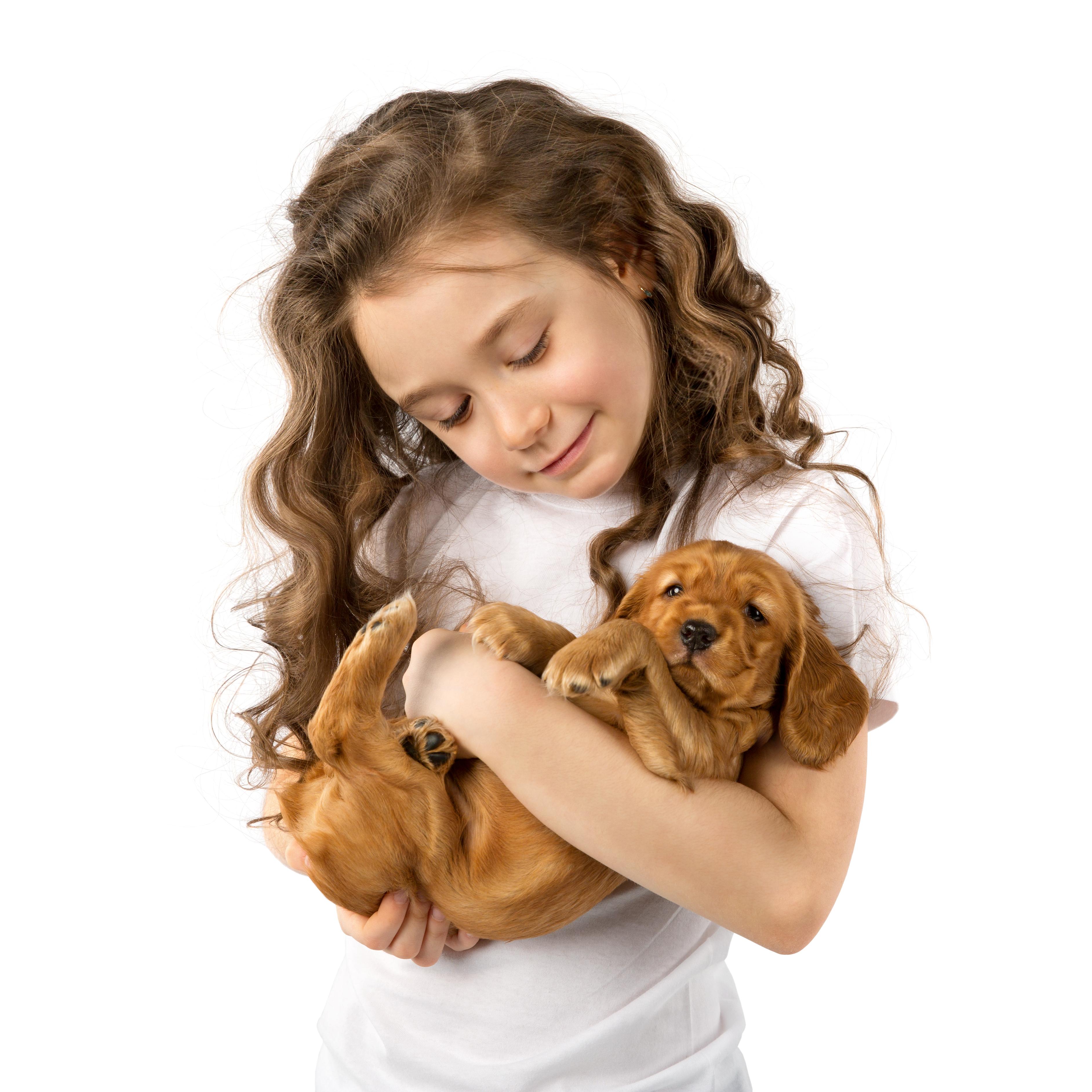 אינטראקציה בריאה בין הילד לבעל החיים (צילום: shutterstock)