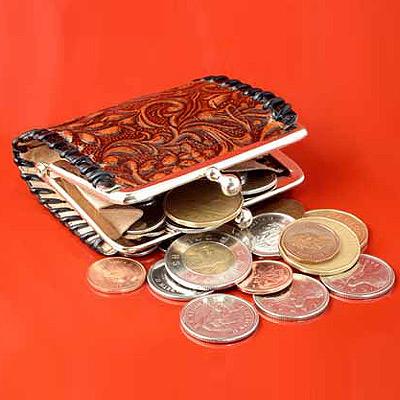 מישהו פותח את הארנק בשבילך (צ' - ShutterStock)