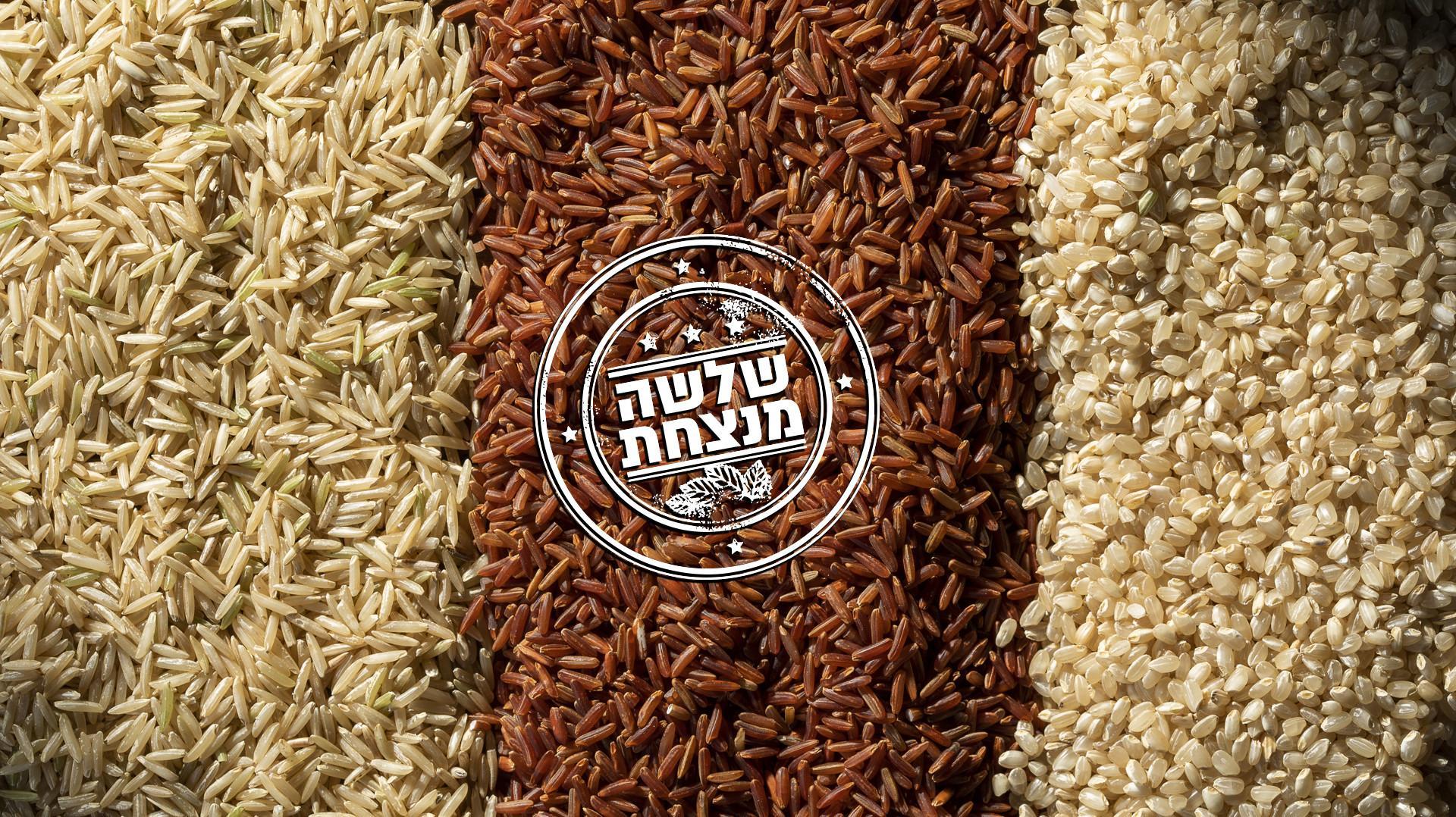 אורז מלא. אסף אמברם,