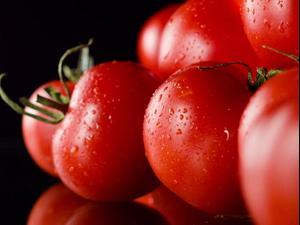 חמש עובדות על עגבניות. ShutterStock