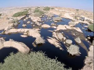 """אחרי חמש שנים: קצא""""א תשלם פיצויים בגובה של יותר  ממאה מיליון שקלים בגלל הזיהום בשמורת עברונה. ללא, אתר רשמי"""