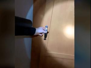 אשה פותחת דלת לחדר נסתר בבית. rooney8900, צילום מסך
