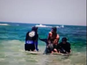 חילוץ דולפינה בחוף מכמורת. אין, מערכת וואלה!
