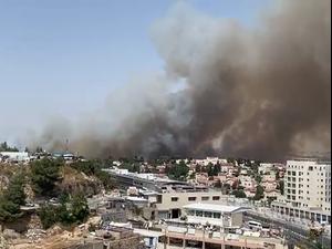 שריפה במבשרת ציון: תושבים פונו מבתיהם  13.6.21. חדשות על העולם, צילום מסך