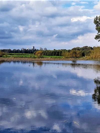 בריכת יער חדרה. רשות הטבע והגנים, רשות הטבע והגנים