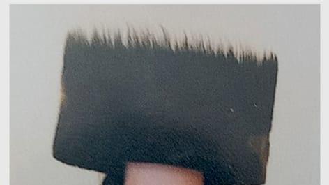 יוסף גרינבוים, נהרג באסון במירון. באדיבות המשפחה