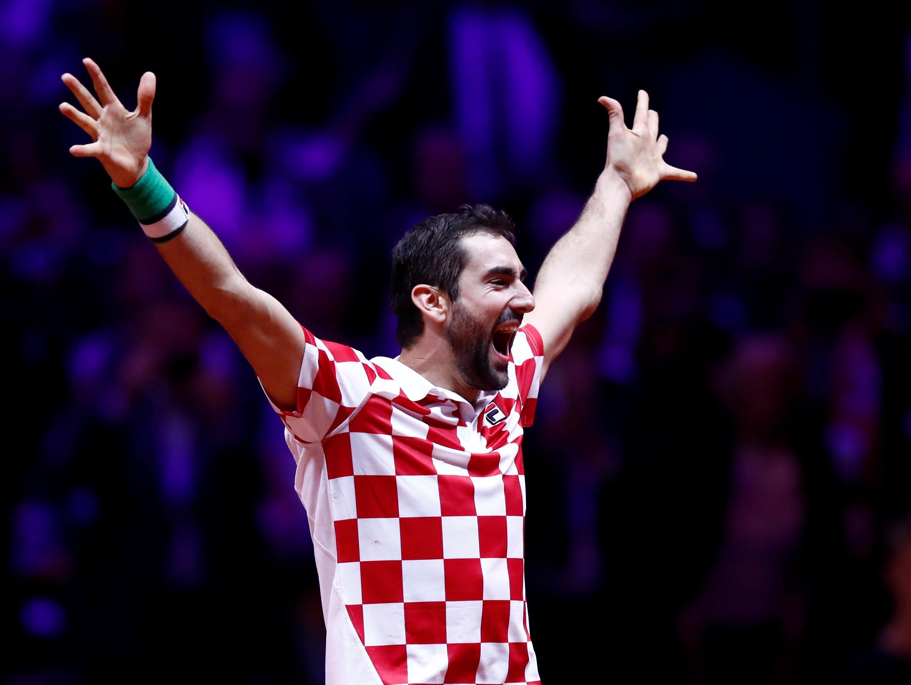 קרואטיה בטירוף, הזכייה בגביע דייויס דורגה שישית בהישגי המדינה בספורט
