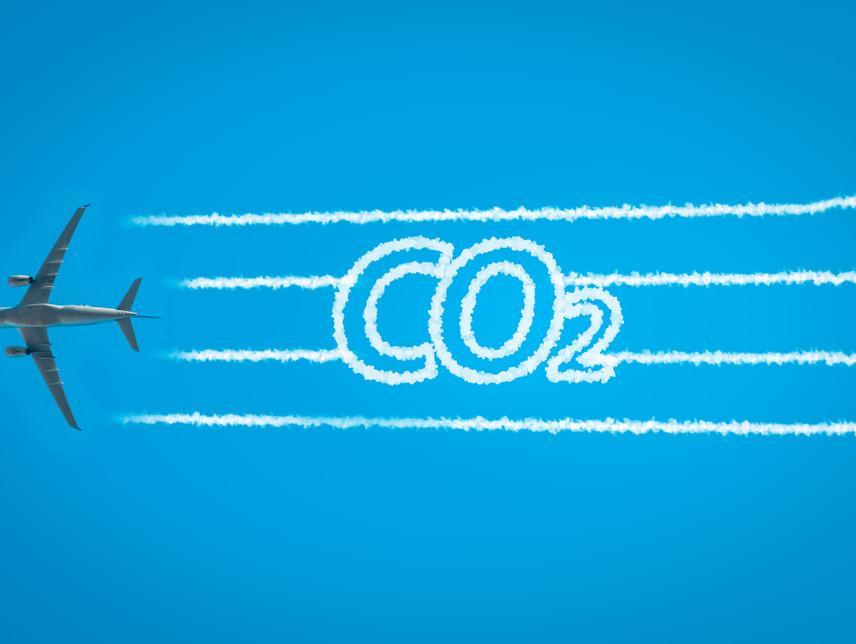 שיימינג טיסה: התנועה שמתנגדת לטיסות ומגנה על הסביבה