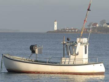 על רקע הפסקת האש: דייג פלסטיני נהרג מירי צה