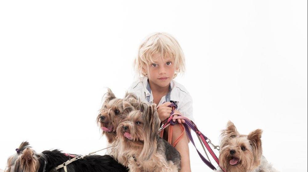 כלבים וילדים. ערן הסינג, אתר רשמי