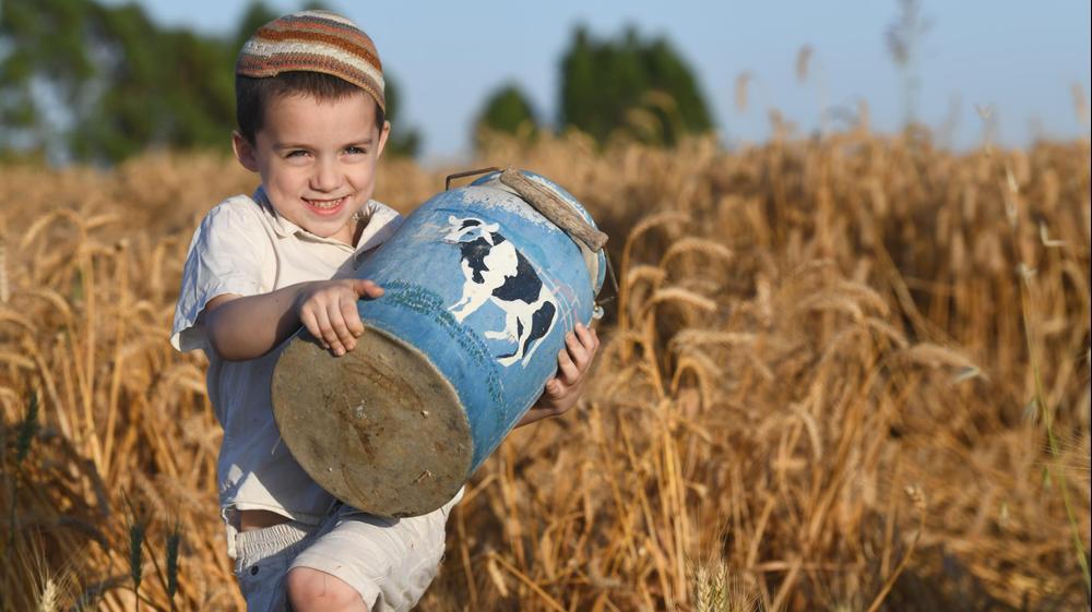 """ילדי """"החווה של חוה"""" החווה הקיבוצית בשדות חפץ חיים מתכוננים לקראת חג השבועות 27 במאי 2020"""