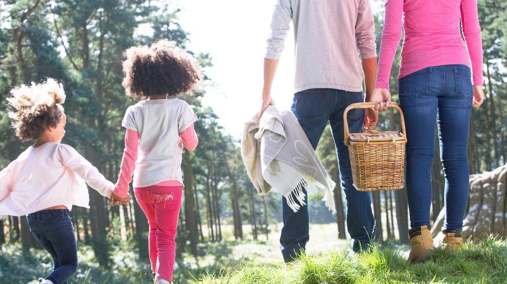 חדשות היום: יום המשפחה: חמישה דברים שאתם צריכים לדעת היום