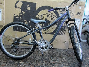 Specialized Toprock24