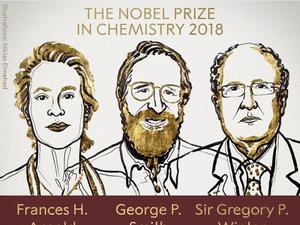 """תהליכים אבולוציוניים  - פרס נובל בכימיה הוענק ל-3 חוקרים מבריטניה ומארה""""ב על יישום תהליכים אבולוציוניים במעבדה"""
