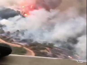 גל שריפות בקליפורניה ואורגון 15.09.20