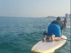 דולפינן מצוי שוחה עם גולשי סאפ בחופי הקריות