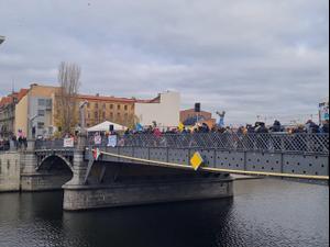 היפים, ניאו-נאצים ומתנגדי חיסונים: אלפים הפגינו בגרמניה נגד הממשל 21.11.20