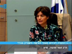 הוועדה לקידום מעמד האישה דנה בתכנית לצמצום האלימות במשפחה 25.11.20