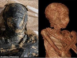 לראשונה נמצאה מומייה בהריון במצריים. Polish Academy of Sciences, אתר רשמי