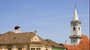 חסידה בקן על גג בניין בכפר ראסט, אוסטריה