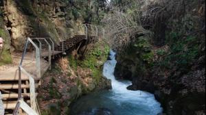 נחל הבניאס הגשר התלוי