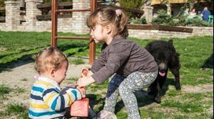 ילדה חוטפת צעצוע לאחיה התינוק. ShutterStock