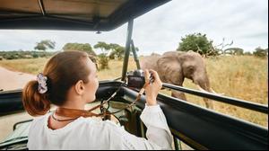 פילים טנזניה