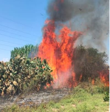 Incendies suite au lancement de ballons incendiaires dans la bande de Gaza le 10 août 2020
