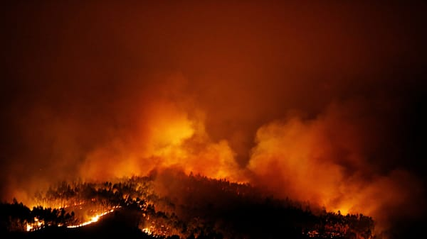 שריפת יער במרכז פורטוגל 18 ביוני 2017