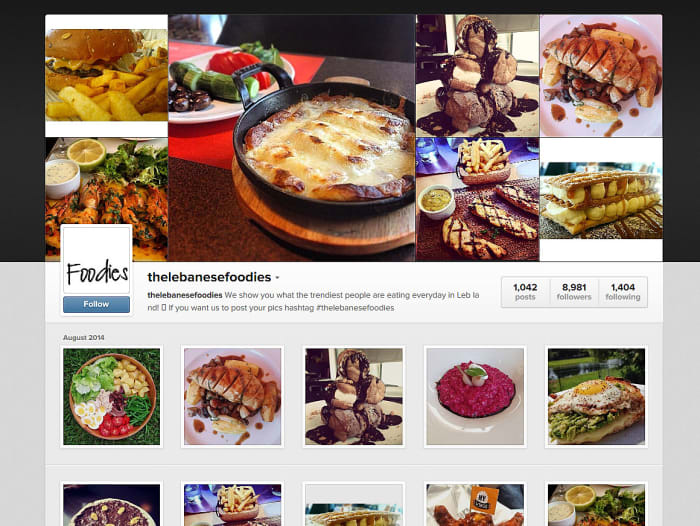 the lebanese foodies (צילום מסך , http://instagram.com/thelebanesefoodies)