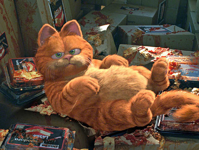 "גארפילד: הסרט Garfield: The Movie (yes , ""Garfield"" and Garfield Characters TM & © Paws, Inc. All Rights Reserved. © 2004 Twentieth Century Fox Film Corporation.)"