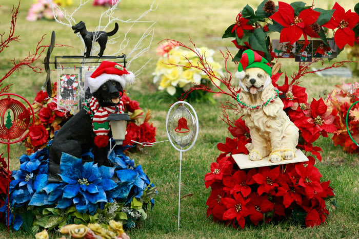Pets' tombstones and headstones are decorated for Christmas and Hanukkah season at the Los Angeles Pet Memorial Park in Calabasas, Calif., Thursday, Dec. 17, 2009. There are more than 30,000 pets buried at the 81-year-old cemetery, nestled on 10 hillside (AP)