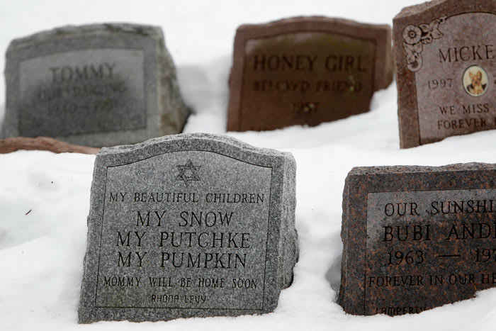 Headstones marking the graves of some of Rhona Levy's pets sit at the Hartsdale Pet Cemetery in Hartsdale, N.Y, 19 Jan 2011 (AP)