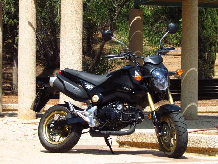 מודיעין הונדה MSX 125 אופנוע עירוני מעוצב ומוזר לצעירים - וואלה! רכב TL-44