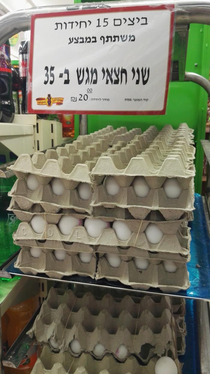 Image result for 12 ביצים מחיר