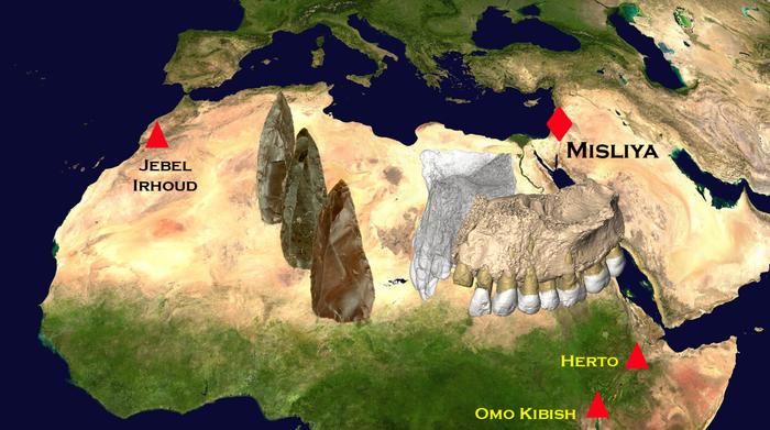 La grotte de Meiselia sur la carte du monde du Carmel (Photographes temporaires autorisés, Université de Tel Aviv)
