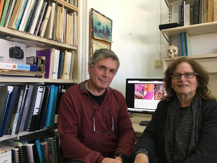 Prof. Israel Hershkowitz et Prof. Mina Weinstein Evron Chercheurs de la grotte de Meiselia (photographes temporaires autorisés, Université de Tel Aviv)