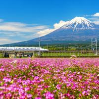 אטרקציות מומלצות ביפן (ShutterStock)